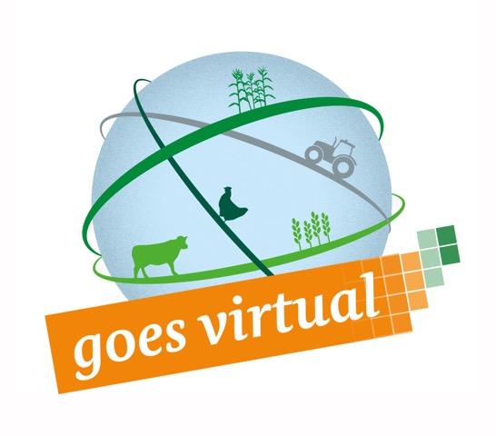 Visual ``goes virtual``